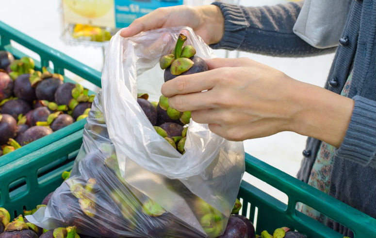 legge sui sacchetti biodegradabili