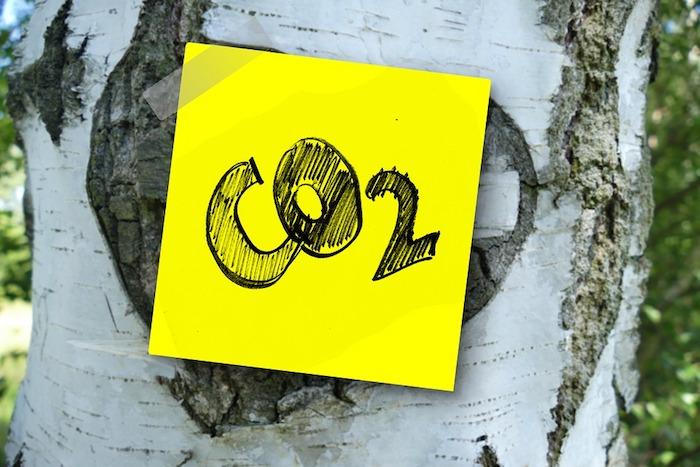 anidride carbonica cos'è