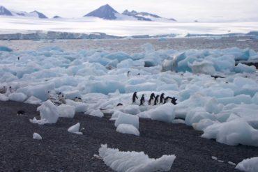 scioglimento dei ghiacciai cause e conseguenze