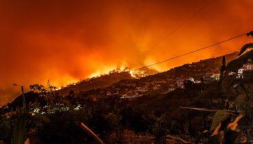 disastri ambientali creati dall'uomo